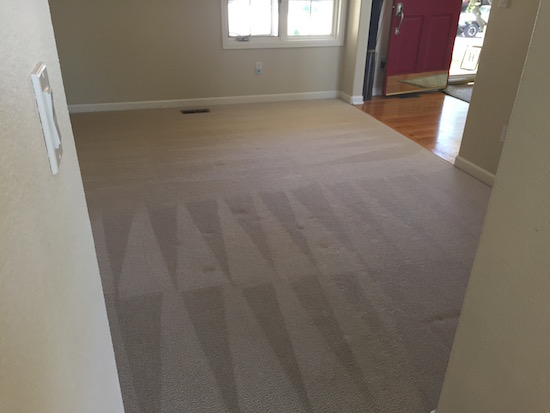 When You Can T Replace Carpet At Least Shampoo It House